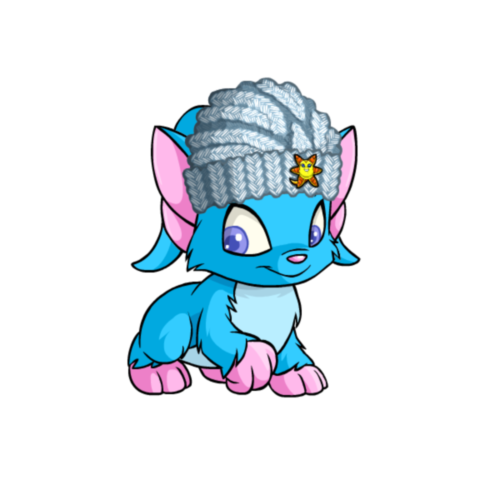 http://images.neopets.com/altador/altadorcup/wearables/75796.png
