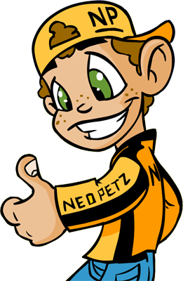 http://images.neopets.com/community/stuff/nick_neopia.png