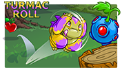 http://images.neopets.com/games/aaa/dailydare/2018/games/turmacroll.png