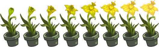 flower_y2_8_fb.png