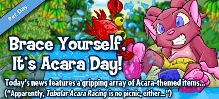 http://images.neopets.com/homepage/marquee/acara_day_2012.jpg