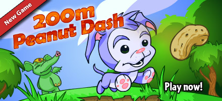 http://images.neopets.com/homepage/marquee/game_200mpeanutdash.jpg