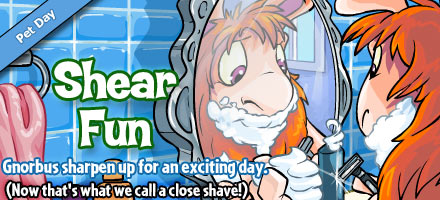 http://images.neopets.com/homepage/marquee/gnorbu_shearing_day_2009.jpg