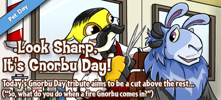 http://images.neopets.com/homepage/marquee/gnorbu_shearing_day_2015.jpg