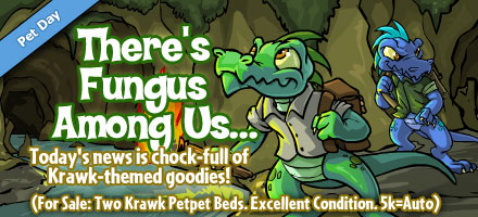 http://images.neopets.com/homepage/marquee/krawk_day_2008.jpg
