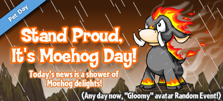 http://images.neopets.com/homepage/marquee/moehog_day_2009.jpg