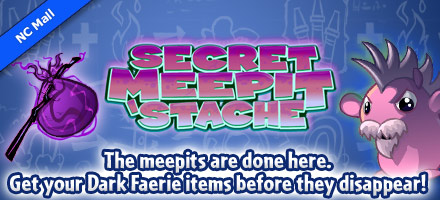 http://images.neopets.com/homepage/marquee/ncmall_game_meepit_retire1.jpg