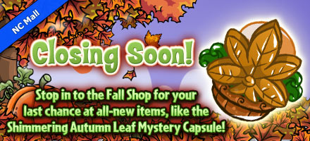 http://images.neopets.com/homepage/marquee/ncmall_mc_shimmeringautumnleaf.jpg