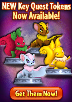 http://images.neopets.com/homepage/promo/2012/mall/2012_kqtokens_usulxweetok.jpg
