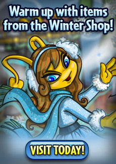 http://images.neopets.com/homepage/promo/2013/mall/2013_wintershop.jpg