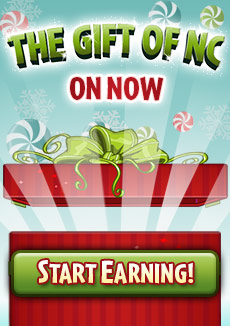 http://images.neopets.com/homepage/promo/2014/mall/2014_giftofnc.jpg