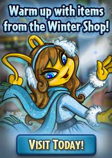 http://images.neopets.com/homepage/promo/2020/mall/2020_wintershop.jpg