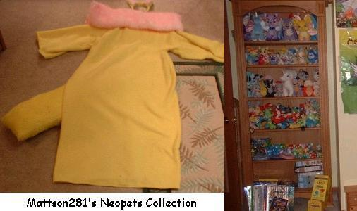 http://images.neopets.com/images/merch_9.jpg