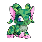 http://images.neopets.com/images/nf/acara_camouflage_happy.png