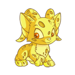 http://images.neopets.com/images/nf/acara_sponge_happy.png