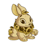http://images.neopets.com/images/nf/cybunny_biscuit_happy.png