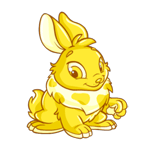 http://images.neopets.com/images/nf/cybunny_gold_happy.png