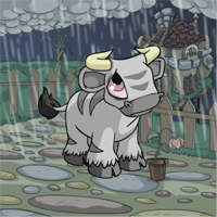 http://images.neopets.com/images/nf/kau_greyday08.png