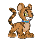 http://images.neopets.com/images/nf/kougra_jewelledcollar.png