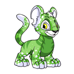 speckled kougra