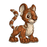 kougra_woodland_happy.png