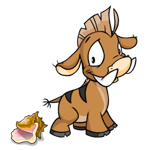 http://images.neopets.com/images/nf/moehog_conchshell.png