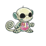 http://images.neopets.com/images/nf/mynci_transparent_happy.png
