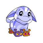 http://images.neopets.com/images/nf/poogle_grundoslippers.png
