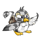 http://images.neopets.com/images/nf/pteri_explorersbackpack.png