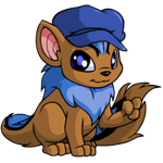 http://images.neopets.com/images/nf/xweetok_bluenewsboy.png