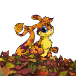 http://images.neopets.com/images/nf/zafara_beaufallleaffg.png