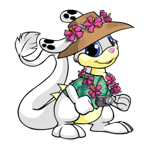 http://images.neopets.com/images/nf/zafara_tdayclothes.png