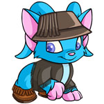 http://images.neopets.com/items/acara-tasseled-outfit.jpg