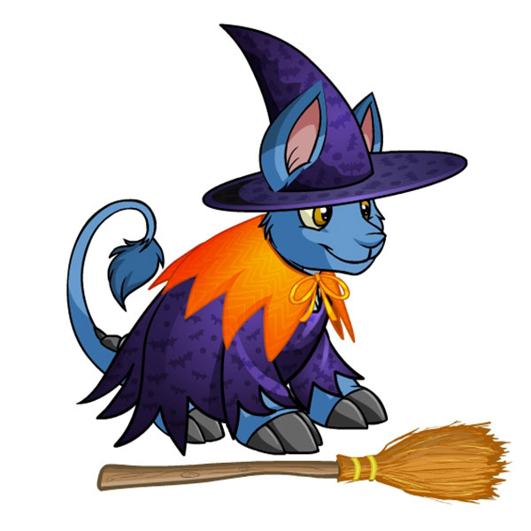 http://images.neopets.com/items/bori-outfit-witch.jpg