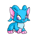 http://images.neopets.com/reg/pets/full_pets/acara_blue_f.png