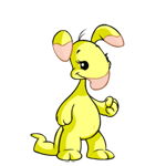 http://images.neopets.com/reg/pets/full_pets/blumaroo_yellow_f.png
