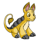 http://images.neopets.com/reg/pets/full_pets/bori_yellow_m.png