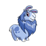 http://images.neopets.com/reg/pets/full_pets/gnorbu_blue_f.png