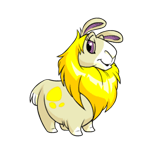 http://images.neopets.com/reg/pets/full_pets/gnorbu_yellow_f.png