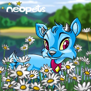 http://images.neopets.com/surveyimg/5457/15.jpg