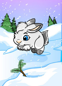 http://images.neopets.com/surveyimg/sur_cards/01_base/226.jpg