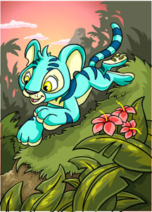 http://images.neopets.com/surveyimg/sur_cards/03_sloth/072.jpg