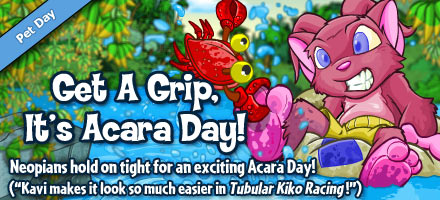https://images.neopets.com/homepage/marquee/acara_day_2011.jpg