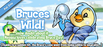 https://images.neopets.com/homepage/marquee/bruce_day_2008.jpg