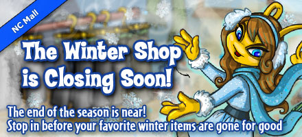 https://images.neopets.com/homepage/marquee/ncmall_wintershop_2012_v2.jpg