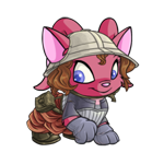 https://images.neopets.com/images/nf/acara_adventoutfit.png