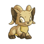 https://images.neopets.com/images/nf/acara_biscuit_happy.png