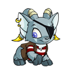 https://images.neopets.com/images/nf/acara_pirate_happy.png
